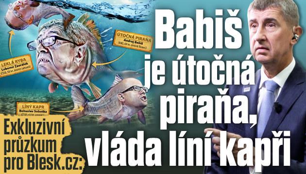 Exkluzivní průzkum: Babiš je piraňa, vláda líní kapři