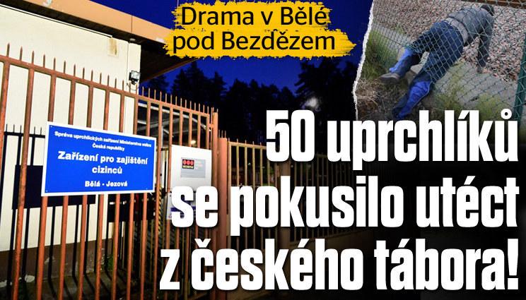 Padesát uprchlíků chtělo utéct z tábora v Bělé