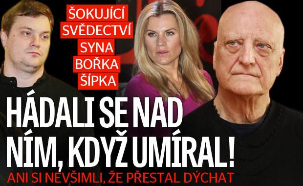Šokující svědectví syna Bořka Šípka: Hádali se nad ním, když umíral! Ani si nevšimli, že zemřel…