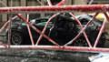 V New Yorku se zřítil obří jeřáb. Rozdrtil rodáka z Čech