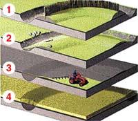 Proces vzniku vegetačních příznaků historického objektu