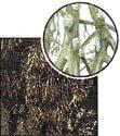 Ramalian farinacea (0,4x)