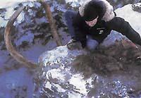 Mamut v ledu