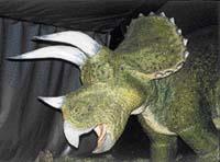Samice triceratopse na sebe upozorňuje řevem