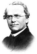 Dědičnost zkoumal už ve druhé polovině 19. století moravský kněz Gregor Mendel, ale ještě neznal její molekulární podstatu