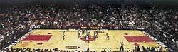Díky Michaelu Jordanovi a několika dalším hvězdám (například Magiku Johnsonovi) se NBA stala nejprestižnější soutěží na Zemi.