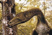 Obrovský Nothronychus se pohyboval po zadních končetinách a tělo měl kryté primitivním peřím