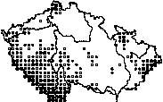 Rys ostrovid 1996 - 2000