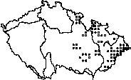Medvěd brtník 1970 - 2000
