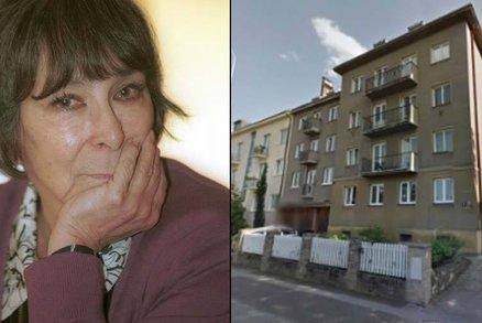 Smutné tajemství Hany Hegerové: Snacha vypadla z okna!
