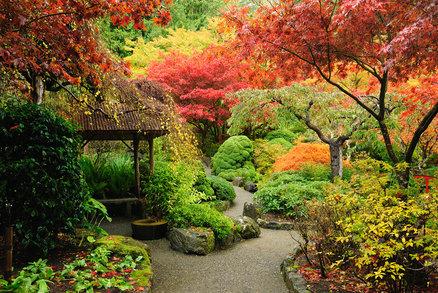 Fotogalerie: Nejkrásnější podzimní zahrady. Inspirujte se jimi i vy