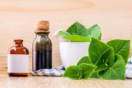 Jak užívat rýmovník: Vyrobte z něj čaj, sirup i mast proti nachlazení