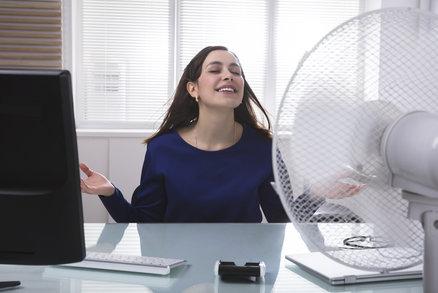 Jak vybrat účinný větrák. Podívejte se, kolik za něj dáte