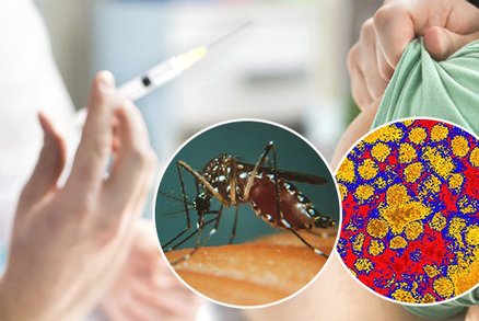 Strávíte svátky v exotice? Jaké nákazy kde hrozí? Plus velký přehled očkování!