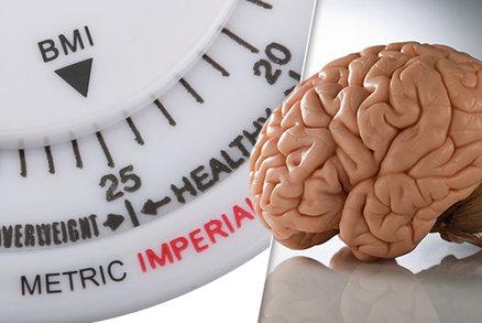 Větší břicho, menší mozek? Vědci poodhalili vztah mezi obezitou a šedou kůrou