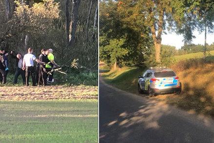 Neštěstí na Benešovsku: Při kácení stromů zemřela žena!