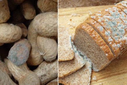 """Nebezpečné plísňové jedy v potravinách: Jak se jim vyhnout a proč dát """"bacha"""" na arašídy"""