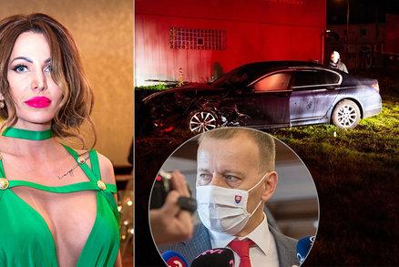 Se šéfem parlamentu jela ve služebáku bývalá Miss: Sexbomba skončila po nehodě v nemocnici