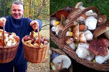 Konec října a pořád plné koše! Co mykolog slibuje houbařům?