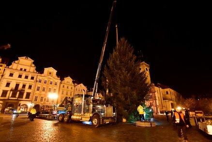 ŽIVĚ: Vánoční strom už stojí na Staroměstském náměstí! V noci ho vztyčili, podívejte se