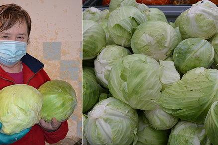 Marie (68) nakládá zelí už 25 let! Tady je její rodinný recept! Jak ho máte rádi vy?