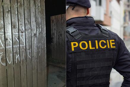 Žena (68) na Jičínsku malovala prasata policistům na vrata: Pokus o útěk se jí nepovedl