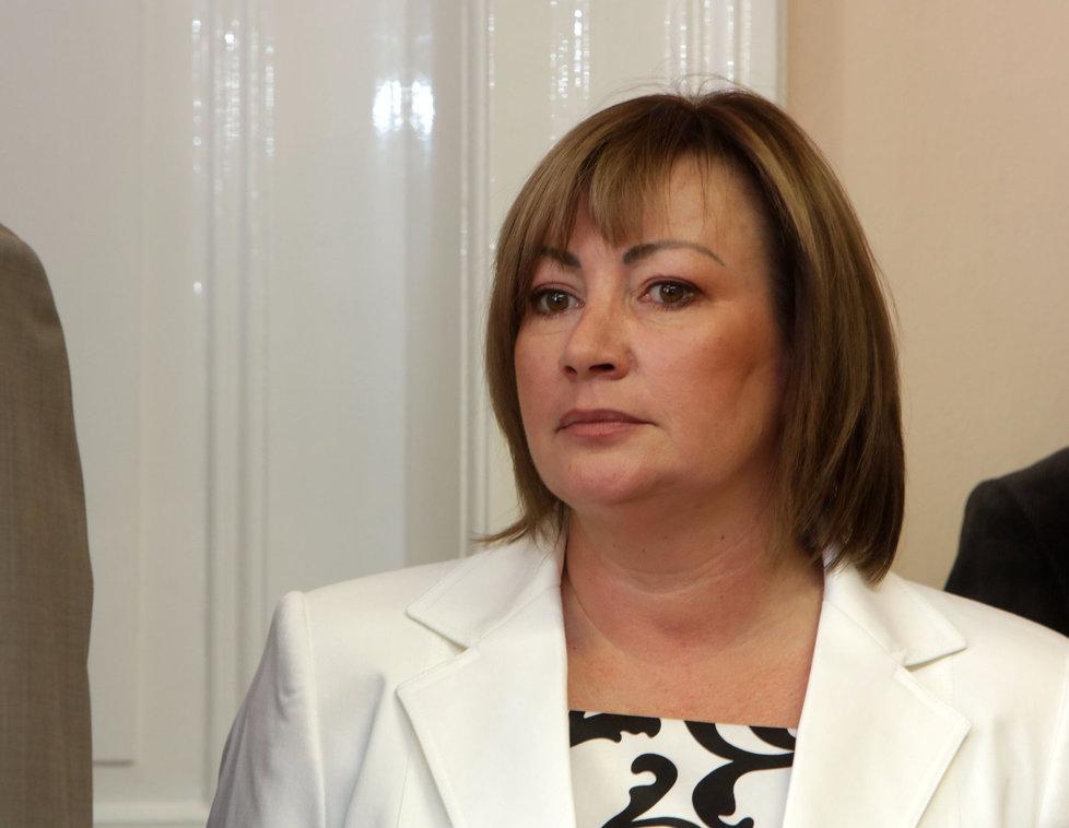 Ivana Zemanová (2013)