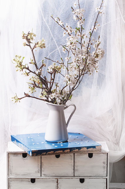 Tradičně se do vázy dávají větvičky třešně.