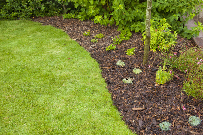 Mulčovací kůra zabraňuje klíčení plevele a omezuje vypařování půdní vláhy. A stane se výborným estetickým doplňkem vaší zahrady.