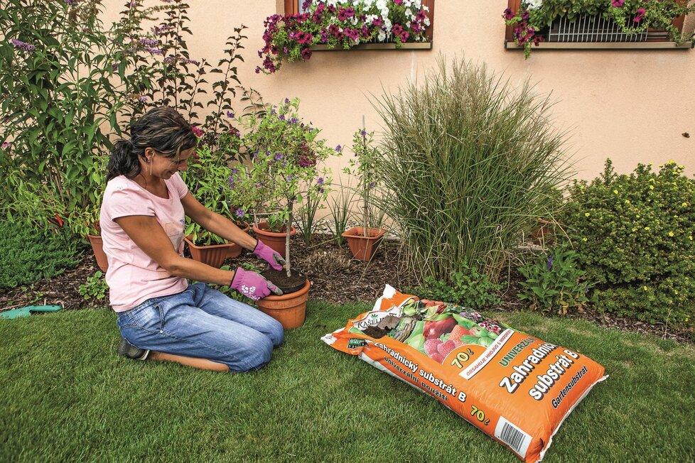 Obsahuje organickou a minerální výživu – zahradnický substrát je vhodný pro nově zasazené květiny, stromy i keře a pomáhá jim přizpůsobit se novým podmínkám.