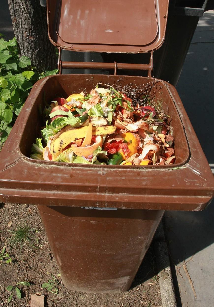Místní z městské části Praha-Královice se mohou zbavit bioodpadu.