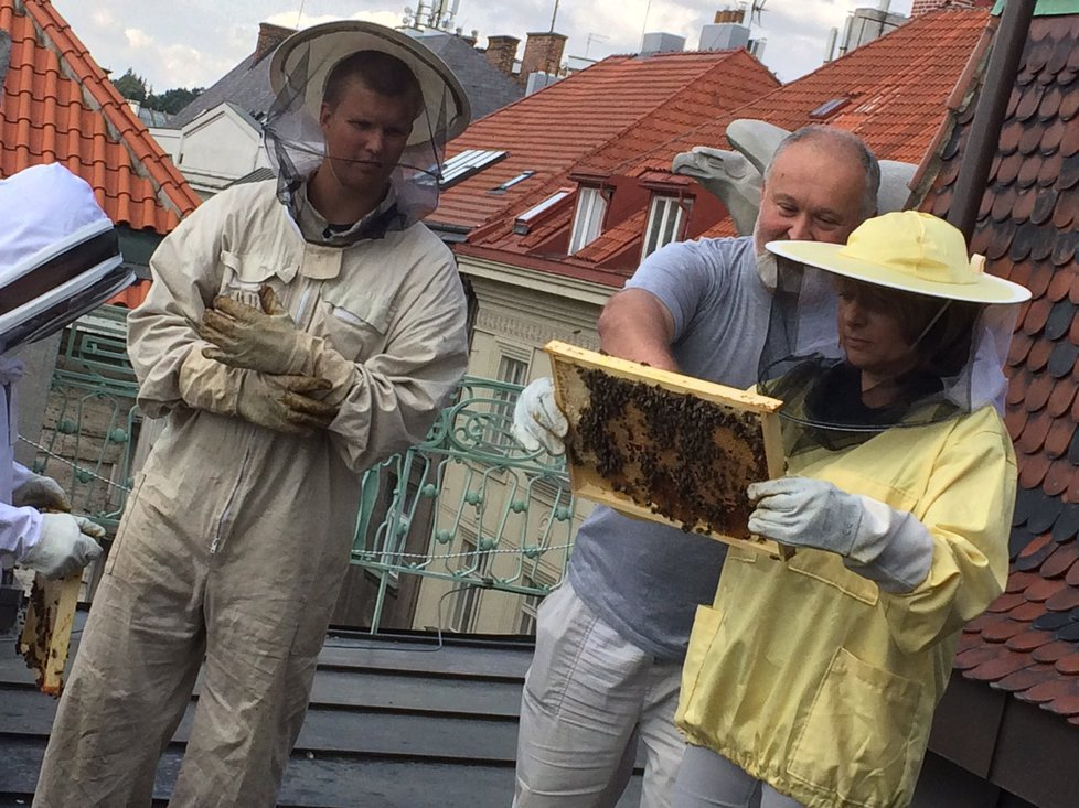 Na střechu vyrazila v ochranném obleku také primátorka Adriana Krnáčová.