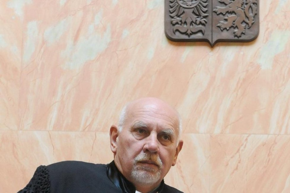Předseda Ústavního soudu Pavel Rychetský