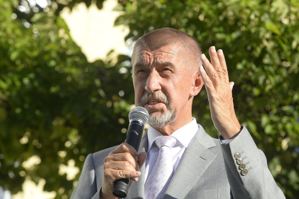 Zákon je namířen proti Andreji Babišovi (ANO), který vlastní mediální dům Mafra i zemědělský koncern Agrofert.