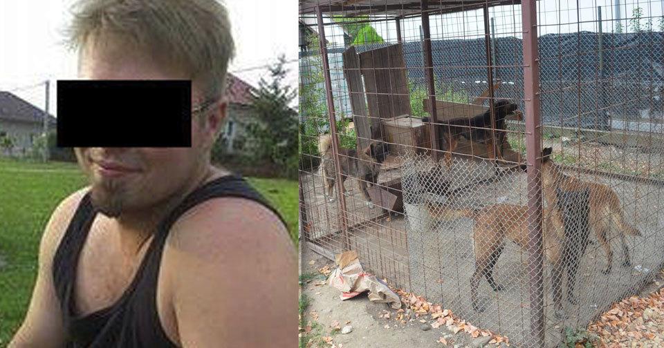 Smečka psů roztrhala v září 2016 pětiletého chlapečka v Lužci nad Cidlinou