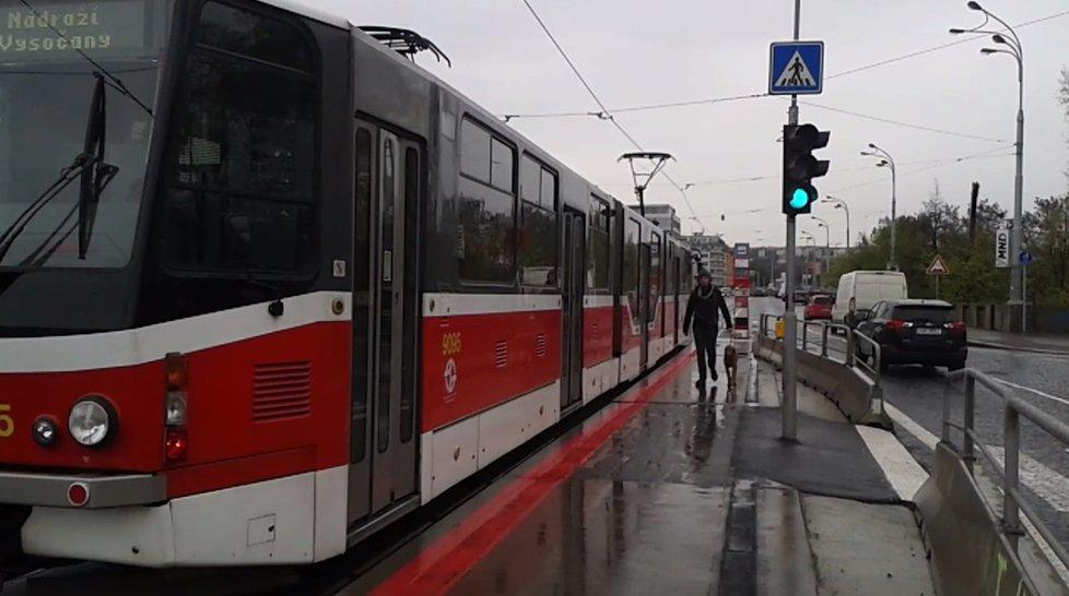 Z tramvaje na Štvanici kromě lidských cestujících vystoupil také jeden pes.