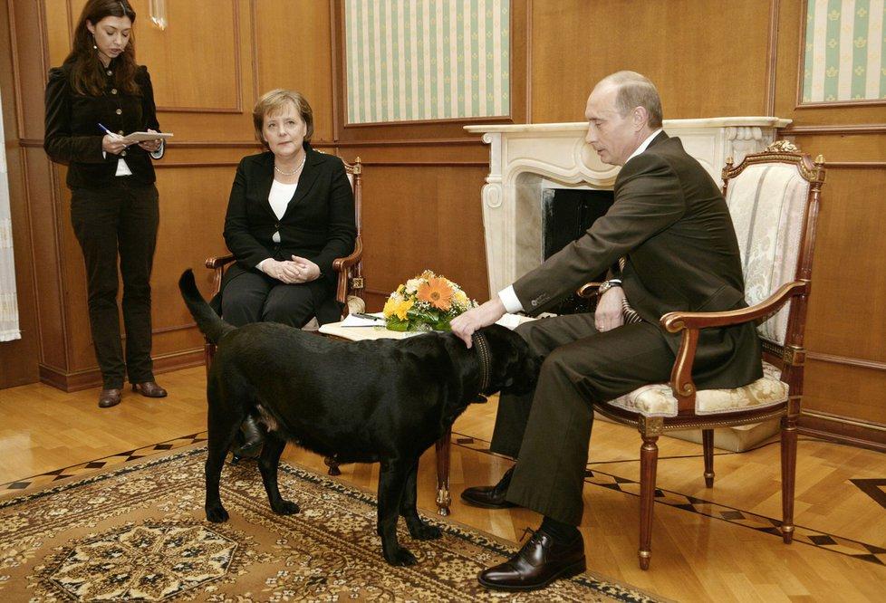 Na jednání Vladimira Putina a Angely Merkelové v roce 2007 v Soči nechyběl velký černý pes.