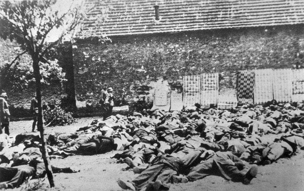 Zahrada Horákova statku, kde byli postříleni lidičtí muži. Slamníky měly zabránit odrážení kulek.