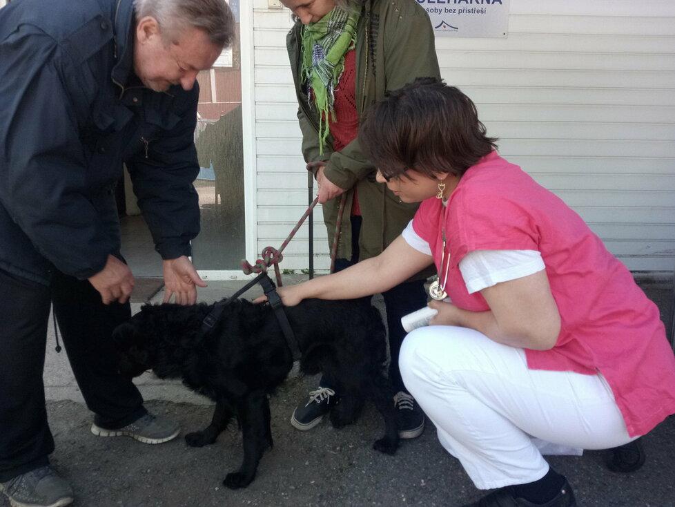 Pražští bezdomovci se o své psy starají lépe než o sebe. Tvrdí to veterinářka, která s nimi přichází do styku.