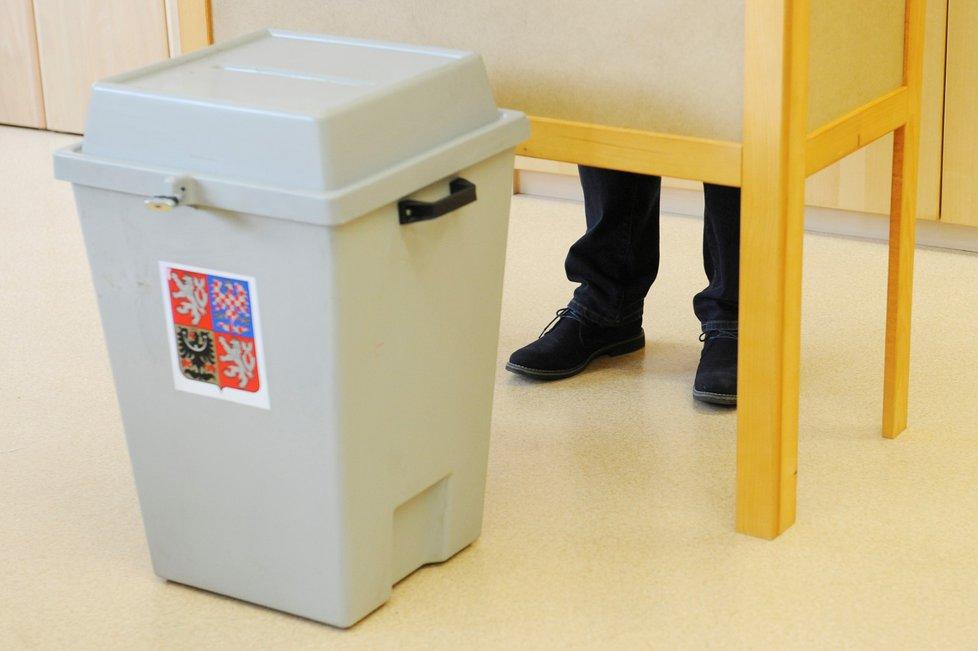 Pokud si budete voličský průkaz vyřizovat osobně, tak máte čas do 10. ledna.