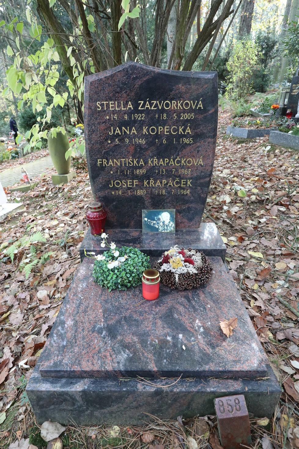 Hrob Stelly Zázvorkové