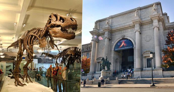Americké přírodovědné muzeum