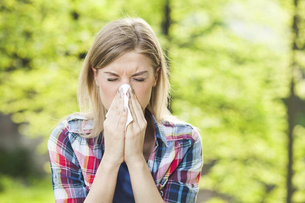 Pylová sezona trvá i deset měsíců v roce! Alergici trpí, ale jsou způsoby, jak si ulevit.