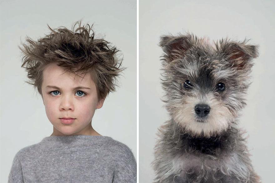 Portréty britského fotografa Gerrarda Gethingse dokazují, že pes a jeho páníček si jsou opravdu podobní