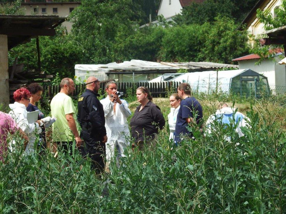 """Iva Wastlová je vyšetřována na svobodě, policie ji v létě přivlekla na její zahradu, aby přihlížela exhumaci těl mrtvých zvířat, které její """"chov"""" v množírně nepřežili."""