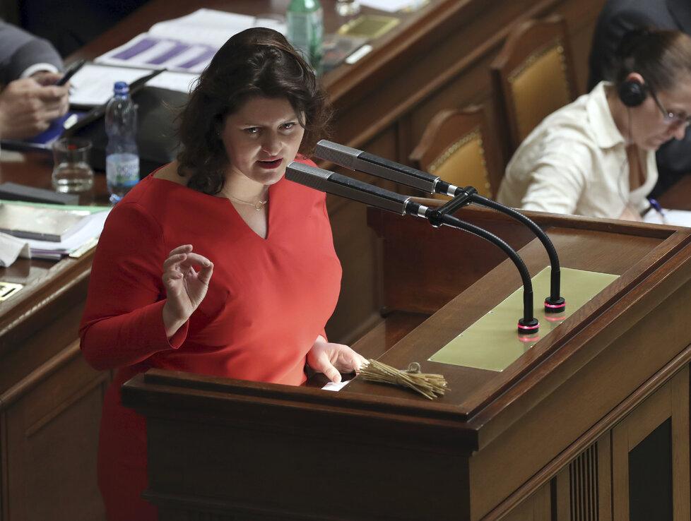 Jana Maláčová (ČSSD) v červnu 2019 na Bláhův výrok ostře zareagovala.