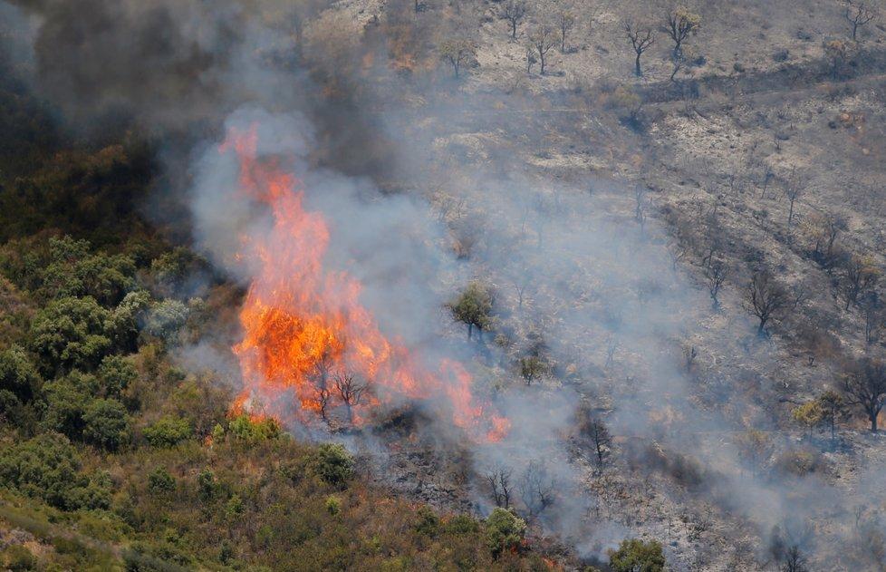 Americká Kalifornie je sužována divokými požáry.