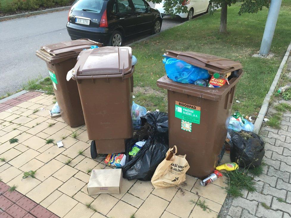 Tohle je opravdu vrchol. V popelnicích na bioodpad i kolem nich je všechno možné, jen ne ten bioodpad.