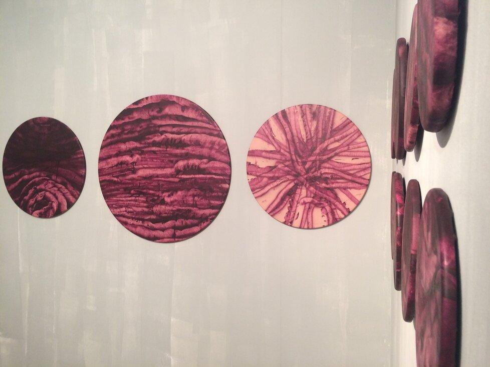 Separované od zbytku jsou Musilovy variace na téma kruh. V uzavřeném prostoru, v jakém se nalézají, vytváří jejich výjevy těžko popsatelnou atmosféru.