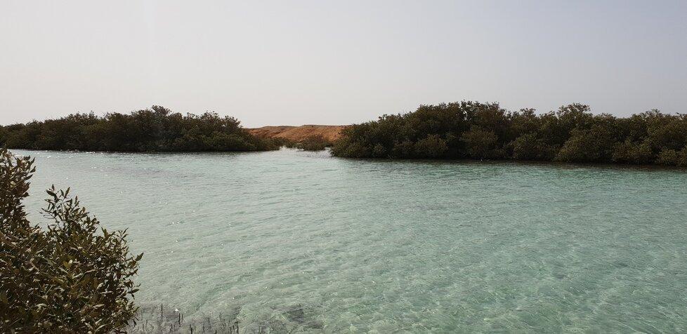 Národní park Ras Mohammed na Sinajském poloostrově.
